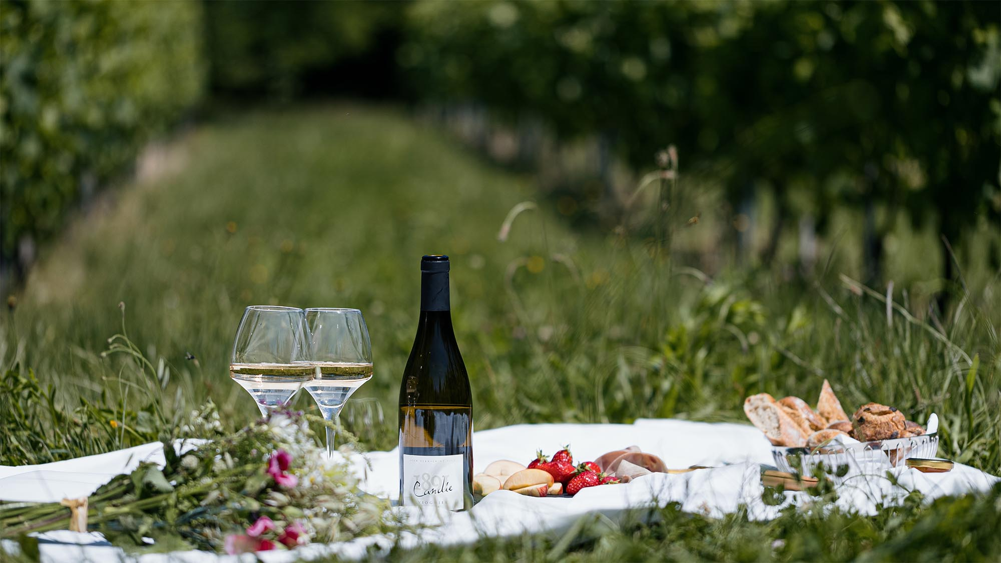 A picnic  photo with a bottle of Candie's wine